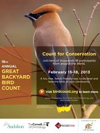 Audubon Backyard Bird Count by Wild Birds Unlimited Everyone Can Participate In The Great