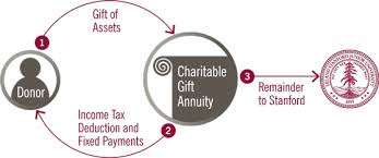 charitable gift annuities giving to stanford