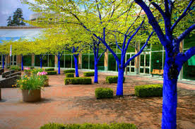 blue trees surreal spectacle coming to seattle parks urbanist