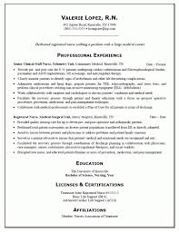 interpreter example resume economic development resume sample