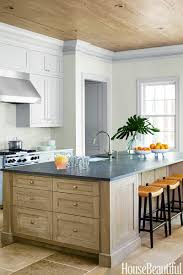 Painted Kitchen Cabinet Color Ideas Kitchen Excellent Light Green Painted Kitchen Cabinets Counter