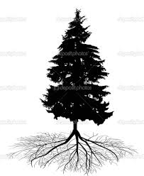 image result for balsam fir with roots tatto inspirations