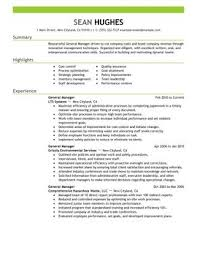 Sample Resume For Management Position by Impactful Professional Management Resume Examples U0026 Resources