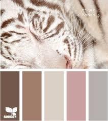 Luxury Color Palette 49 Best Incredible Color Palettes Images On Pinterest Colors