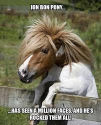 Bon Jovi Meme - jon bon pony puns pun pictures