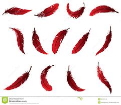 beautiful feather design for logo stock illustration illustration