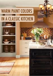 Classic Kitchen Colors 22 Best Orange Rooms Images On Pinterest Orange Rooms Interior