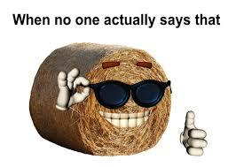 Knowyour Meme - internet meme database know your meme