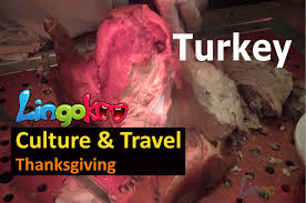 thanksgiving vocabulary english vocabulary thanksgiving youtube