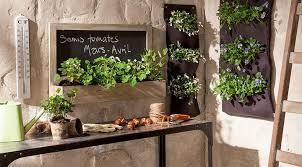 plante cuisine decoration déco cuisine plantes