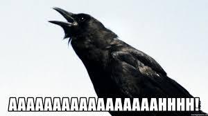 Crow Meme - aaaaaaaaaaaaaaaaahhhh screaming crow meme generator