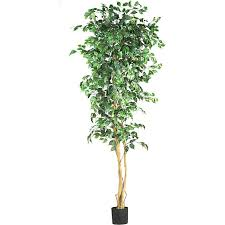 silk ficus 7 foot tree free shipping today overstock