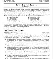 High Level Resume Cheerful Executive Resume Format 14 Templates Word Cv Resume Ideas