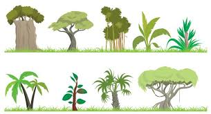 jungle trees clipart free download clip art free clip art