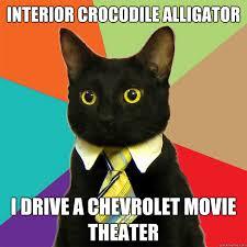 Alligator Memes - interior crocodile alligator cat meme cat planet cat planet