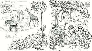 realistic animal coloring pages realistic jungle animal coloring pages 25689 bestofcoloring com