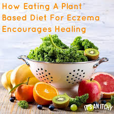 how eating a plant based diet for eczema encourages healing it u0027s