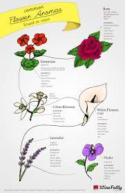 flowers wine 6 common flower aromas in wine wine folly