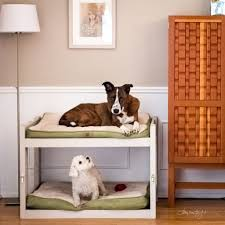 Doggie Bunk Beds Diy Bunk Beds 8 Steps With Pictures