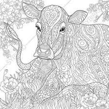 koala bear coloring zentangle coloringpageexpress