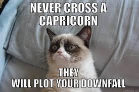 Hot Mess Meme - 20 best memes about being a capricorn sayingimages com