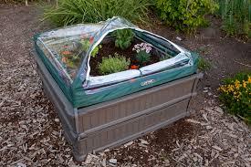 lifetime u0027s new raised garden bed