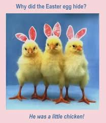 Easter Funny Memes - funny easter quotes funny jokes pinterest funny easter quotes