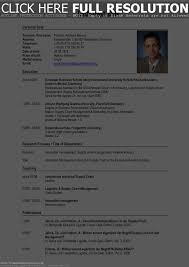 German Resume Template Best Example Of A Resume Examples Objective For Customer Service