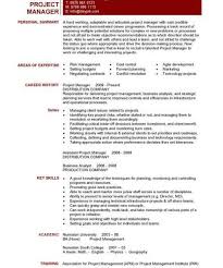 It Risk Management Resume Homely Ideas It Project Manager Resume 6 It Project Cv Template