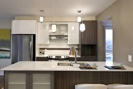 armoire de cuisine thermoplastique ou polyester armoire armoire de cuisine thermoplastique ou polyester armoire de