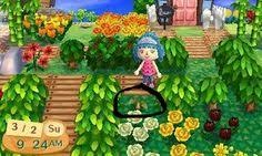 acnl shrubs angie s town animal crossing pinterest animal qr codes and