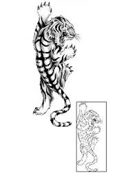 tiger tattoos and tattoo designs symbolism and meaning