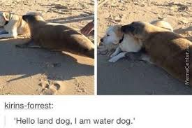 Dogs Memes - dogs by dead5dealer5 meme center