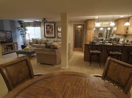 Ideas For Small Basement Best Finish Remodeling Small Interior Decorating Ideas Basement