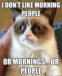 Life Lesson Memes - 10 important life lessons you can learn from grumpy cat gurl com