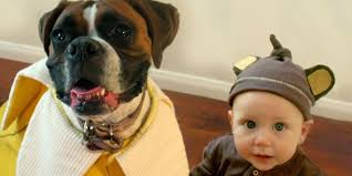 adorable boy and his dog coordinate halloween costumes every year