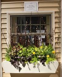 boston flower show u2014 harding botanicals