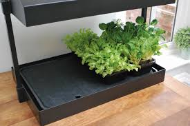 Self Watering Garland Self Watering Tray Insert For Grow Light Garden