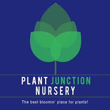 native plants nursery melbourne home page