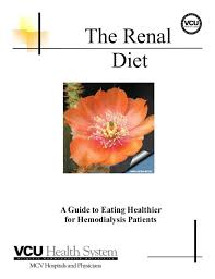 best 25 diet for kidney patients ideas on pinterest kidney