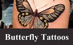 best butterfly designs and ideas