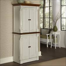 Ikea Kitchen Cabinet Handles Pull Out Drawers Ikea Ikea Komplement Pullout Tray With Insert