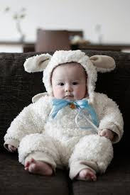 handmade baby lamb costume halloween ideas pinterest baby