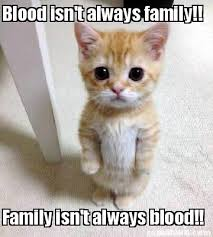 Blood Meme - meme creator blood isn t always family family isn t always blood
