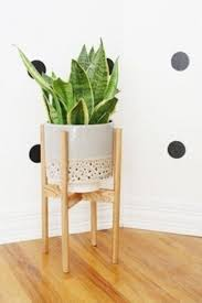 Office Desk Plants by Plant Stand 36 Breathtaking Office Plant Stand Photos Ideas
