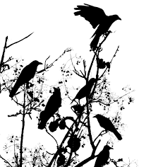 image crows in tree e1343676636120 jpg creepypasta wiki