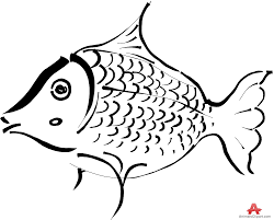 grouper clipart free download clip art free clip art on