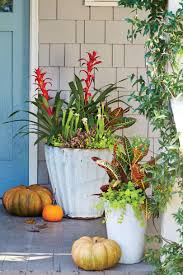 florida gardening ideas fall container gardening ideas southern living