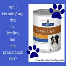 prescription diet dog food u2013 caring for a senior dog
