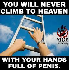 Hard Dick Meme - you will never climb to heaven imgur